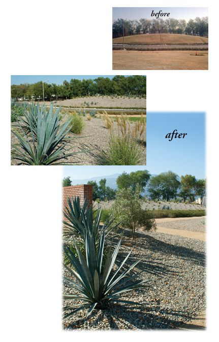 Before and after images of the landscaping at MillerCoors