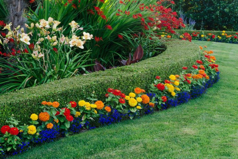 Landscaping with various colorful flowers and plants