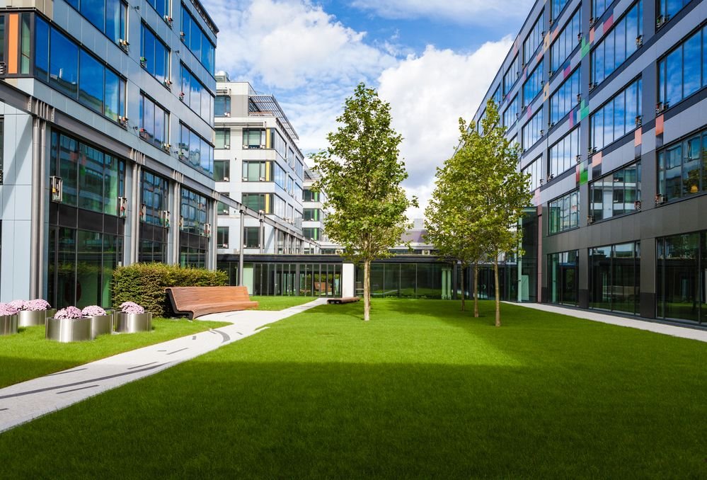 Grassy area between two modern buildings
