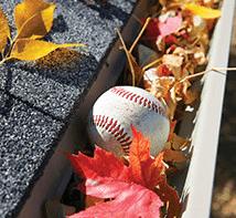 baseball in a pile of fall leaves